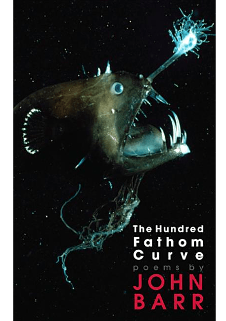 The Hundred Fathom Curve