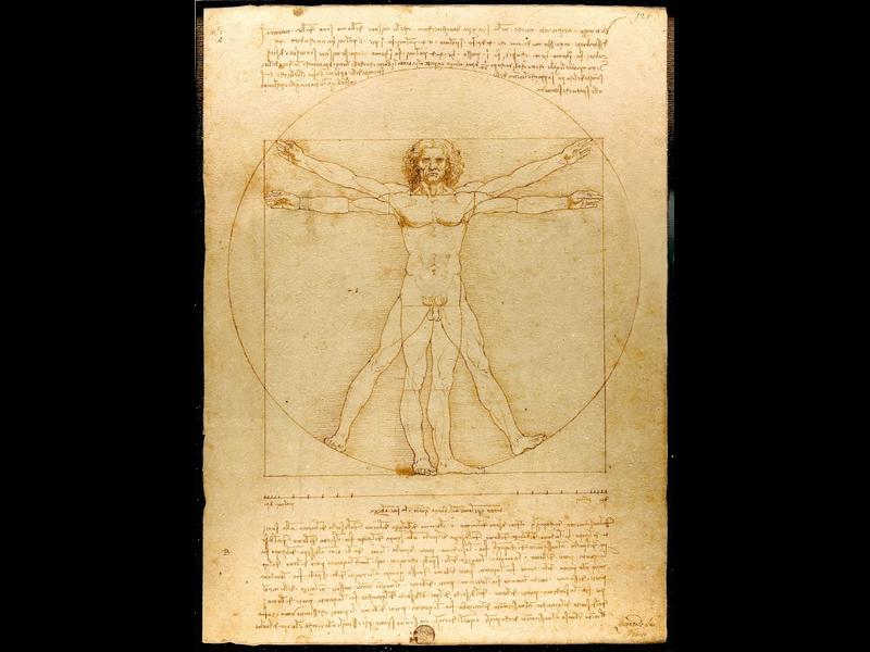 Da Vinci Illustration Body Language